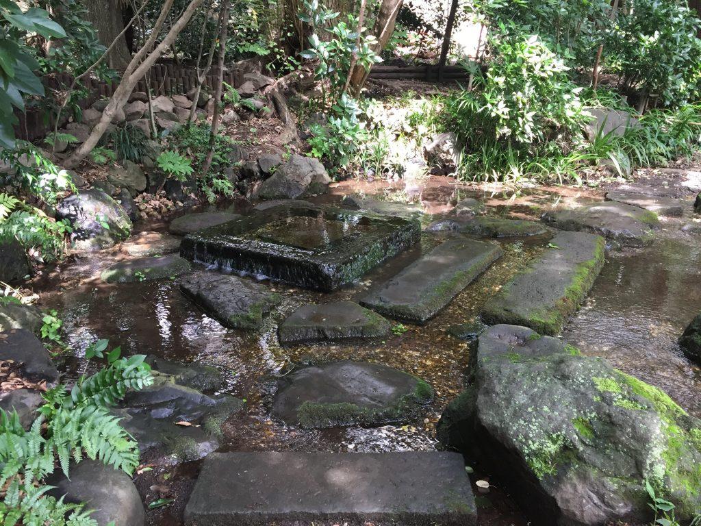 井の頭公園内の御茶ノ水